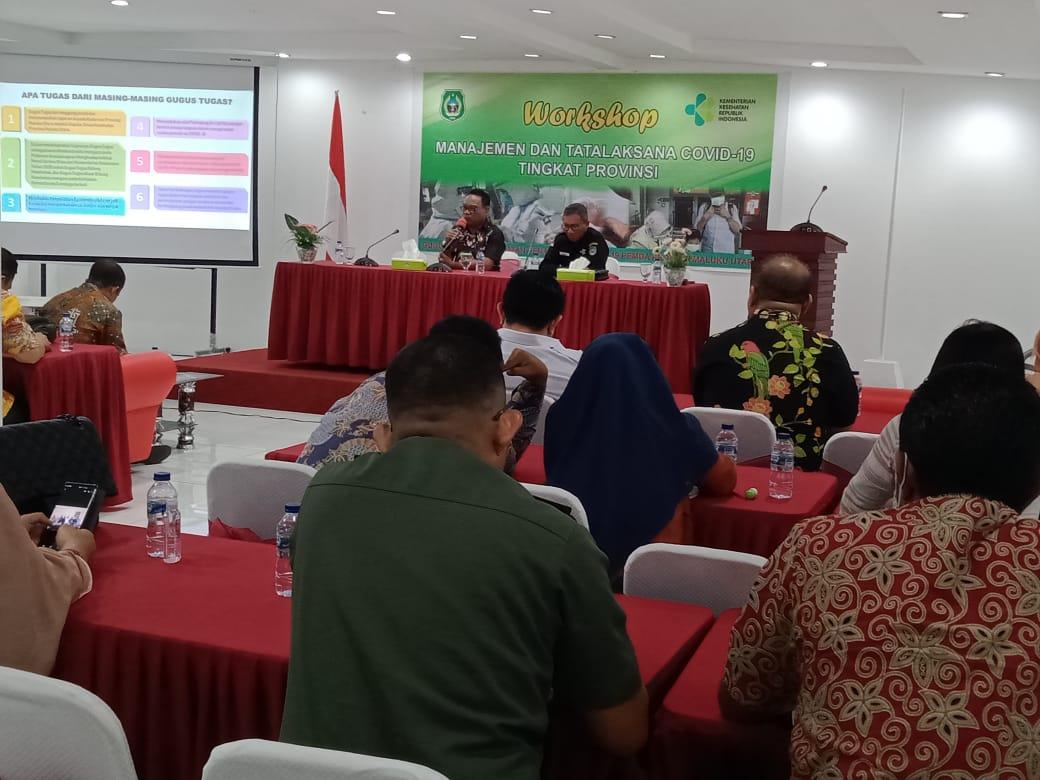 Workshop Menajemen dan Tatakelola COVID-19 Tingkat Provinsi